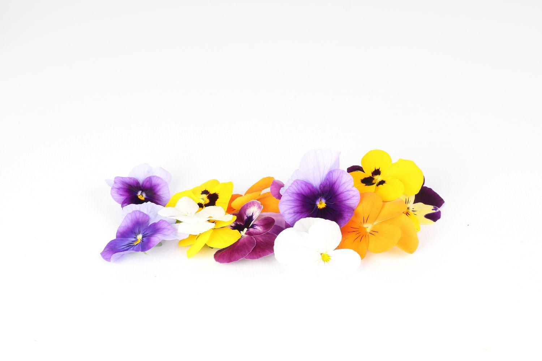 Viola Mix (Amores-perfeitos)