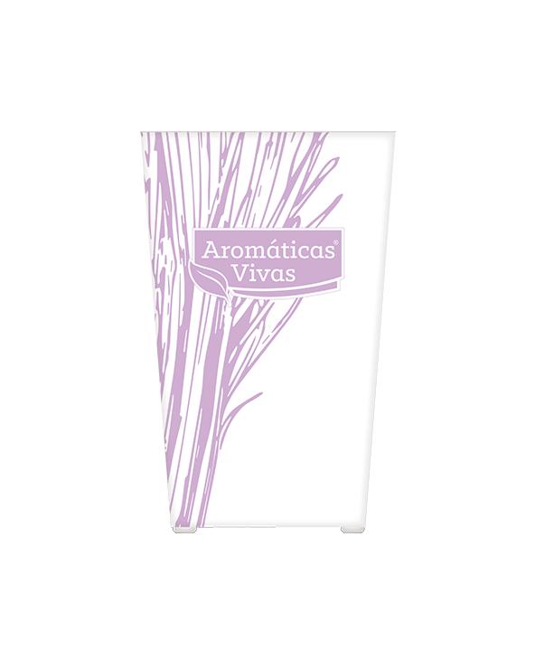 Vaso auto-rega para ervas aromáticas - cebolinho