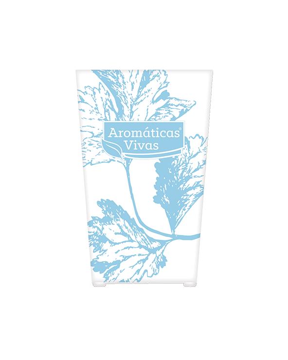 Vaso auto-rega para ervas aromáticas - coentros