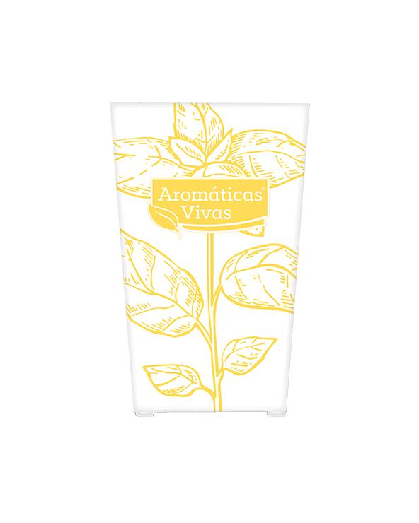 Vaso auto-rega para ervas aromáticas - manjericão