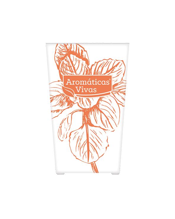 Vaso auto-rega para ervas aromáticas - orégãos
