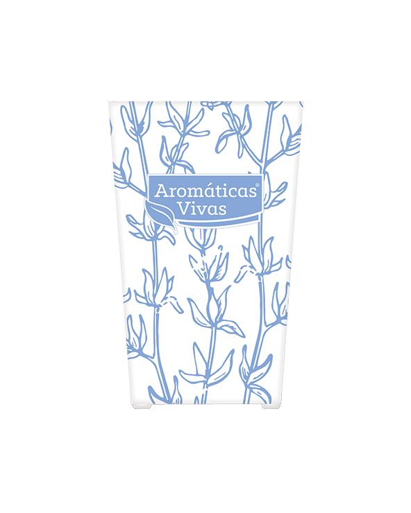Vaso auto-rega para ervas aromáticas - tomilho